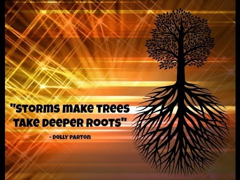 Inspirational Tree Quotes For YOU! - YouTube