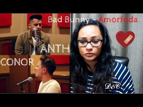Bad Bunny - Amorfoda (English Version) Letra Reaction