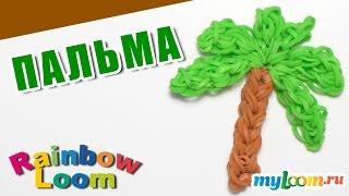 ПАЛЬМА из резинок Rainbow Loom Bands. Урок 467. Сплести ПАЛЬМУ из резинок.