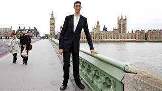 The Life of The Tallest Man Alive