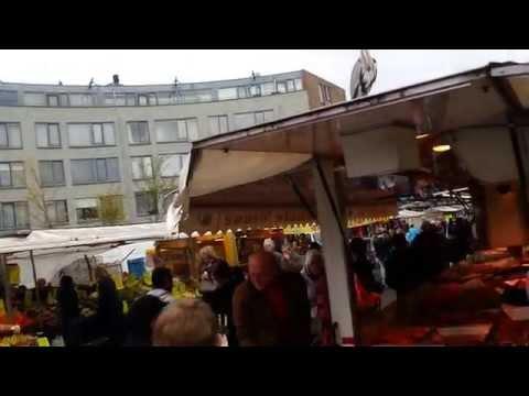 bird over the amsterdam markt