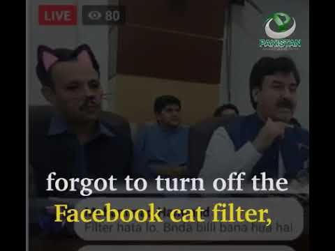Government officials in Pakistan forget to turn off cat filter during Facebook Live press conferenc