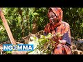 VIDEO | Akothee Ft Harun Deey – Pretty Mama | Download Mp4 [Official Video]