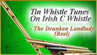 Tin Whistle Tunes On Irish C Whistle - The Drunken Landlady   McNeela Music