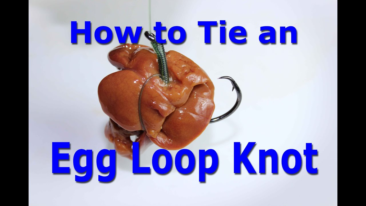 how to tie an egg loop knot keep chicken liver on the