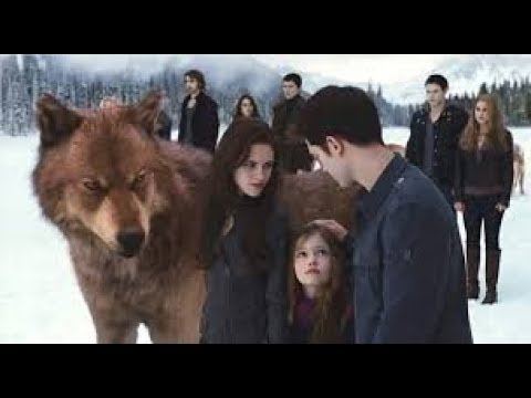 🔥Top 5 Wolf Fight Pack HD 🔥 |vempire And Wolf And Human Love Story | IHiQ TopMovieClips