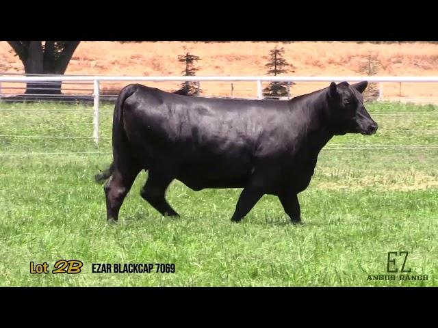 EZ Angus Ranch Lot 2B