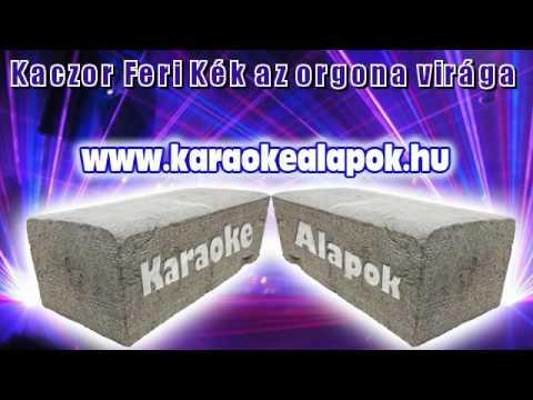 Kaczor Feri Kék az orgona virága (karaoke demo) www.karaokealapok.hu