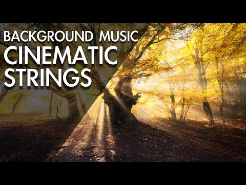 Amazing  Beautiful Cinematic Background Music For Videos - YouTube