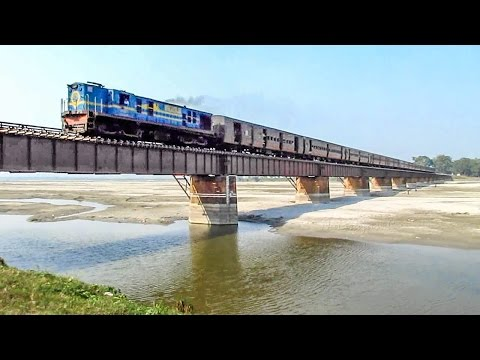 Chasing the Little Superstar through the Forest - Indian Railways
