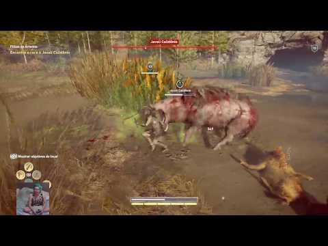 ASSASSIN'S CREED ODYSSEY -Tentando matar o javali lendário - [LIVE HD PS4 PRO]