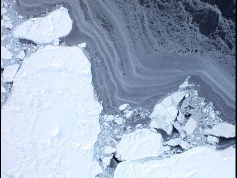 Nine Arctic Seas Gain Ice 2014 | Mini Ice Age 2015-2035  (3)