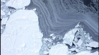 2015-2035 Mini Ice Age | Nine Arctic Seas Gain Ice 2014 (3)