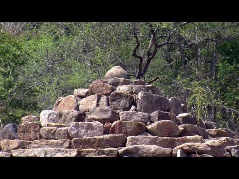 රජගල උරුමය (Rajagala Buddhist Ruins)