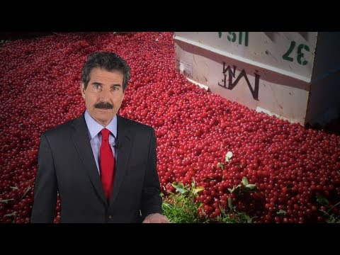 Stossel: Departments Grow and Cherries Rot