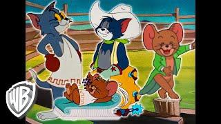Tom Et Jerry En Français  En Route Pour Le Tour Du Monde  Wb Kids