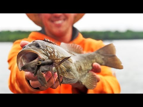 Catching Smallmouth Bass In The SPRING On Table Rock Lake!