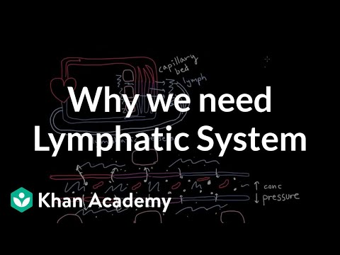 Why we need a lymphatic system | Lymphatic system physiology | NCLEX-RN | Khan Academy