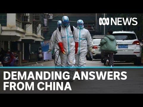Chinese analyst slams call for inquiry into origins of coronavirus | ABC News