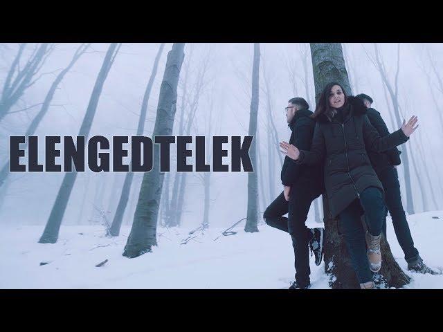 LN FELEK feat NENE - Elengedtelek
