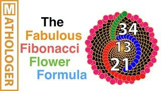 The fabulous Fibonacci flower formula