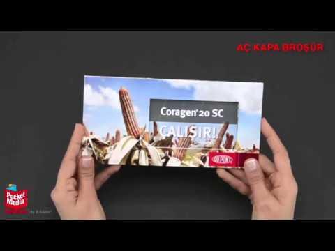 Pocket Media™ Türkiye Ürünler
