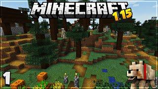 Massive Village & LOOT - Minecraft | 1.15 Survival Let's Play | [Episode 1]