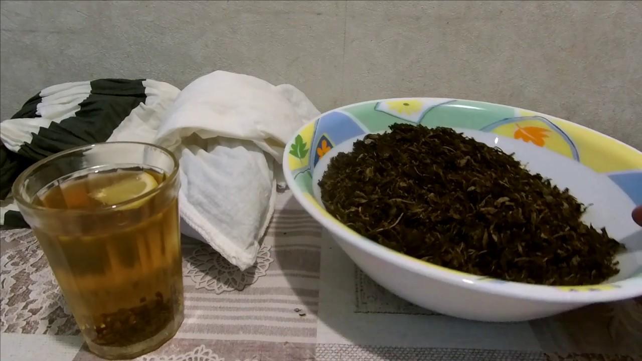 иван чай сбор приготовление