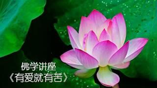佛学讲座《有爱就有苦》(释定融)