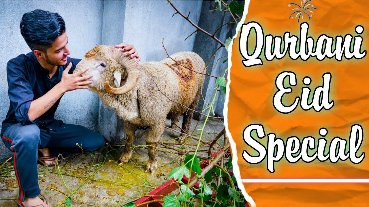 Qurbani Eid Special ||Part 1||