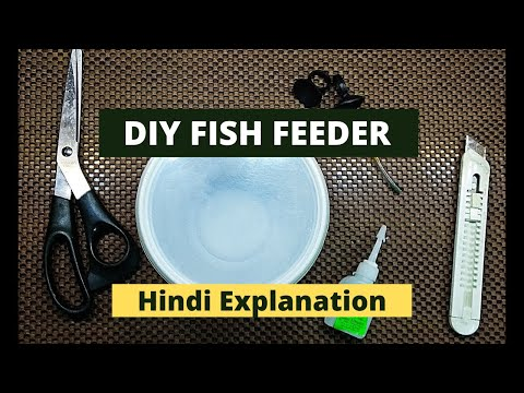 DIY Fish Feeder In No Cost | HINDI