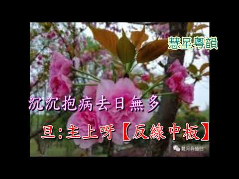 櫻桃落盡春歸去 純音樂 - YouTube