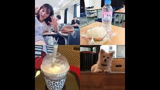 [  Du học sinh Hàn Quốc]  Một ngày nhạt nhẽo như mọi ngày của du học sinh Việt Nam tại Hàn Quốc