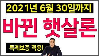 특례보증으로 완화된 햇살론 총정리! [지금생]
