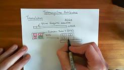 The Tetracycline Antibiotics Part 1