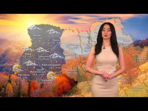 Погода в Украине на 15 октября