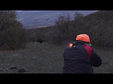 Harika Bir  Domuz Avı Ekip İşi - ÇORUM / Perfect Action  Wild Boar Hunting