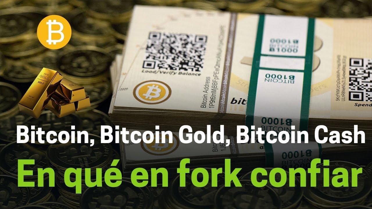 bitcoin vs bitcoin cash vs bitcoin gold vs bitcoin diamond