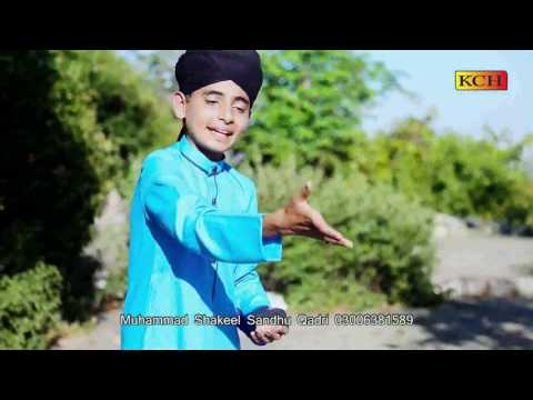 Baba Hain Jin K Mustufa Sartaaj Alli  Hain || Shakeel Ahmad Sindhu |||
