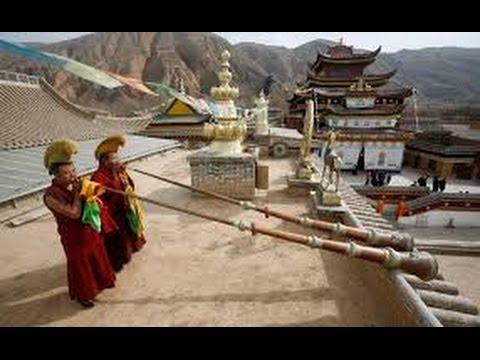 La Muerte de un Buda (Ciencia del Saber)