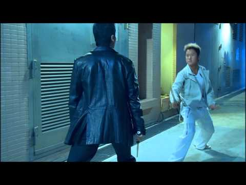 Kill Zone  S.P.L Donnie Yen Vs Wu Jing HD