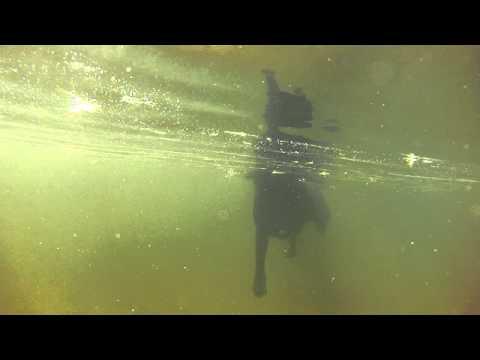 hudson underwater 2