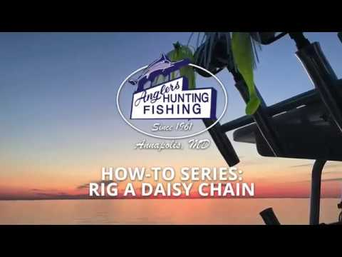 Anglers How To: Rig A Daisy Chain