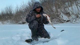 Если захотел на рыбалку надо идти ЩУКА ЖДЁТ Рыбалка на жерлицы