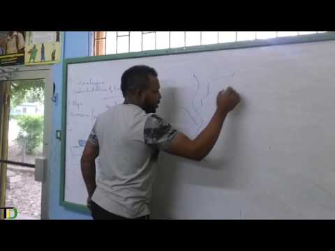 Csec Geography Paper 2 Practice (VLOG) Past Paper Run Through.............
