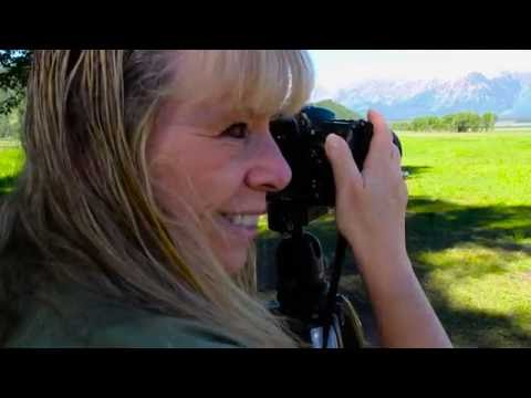 Yellowstone Tribute