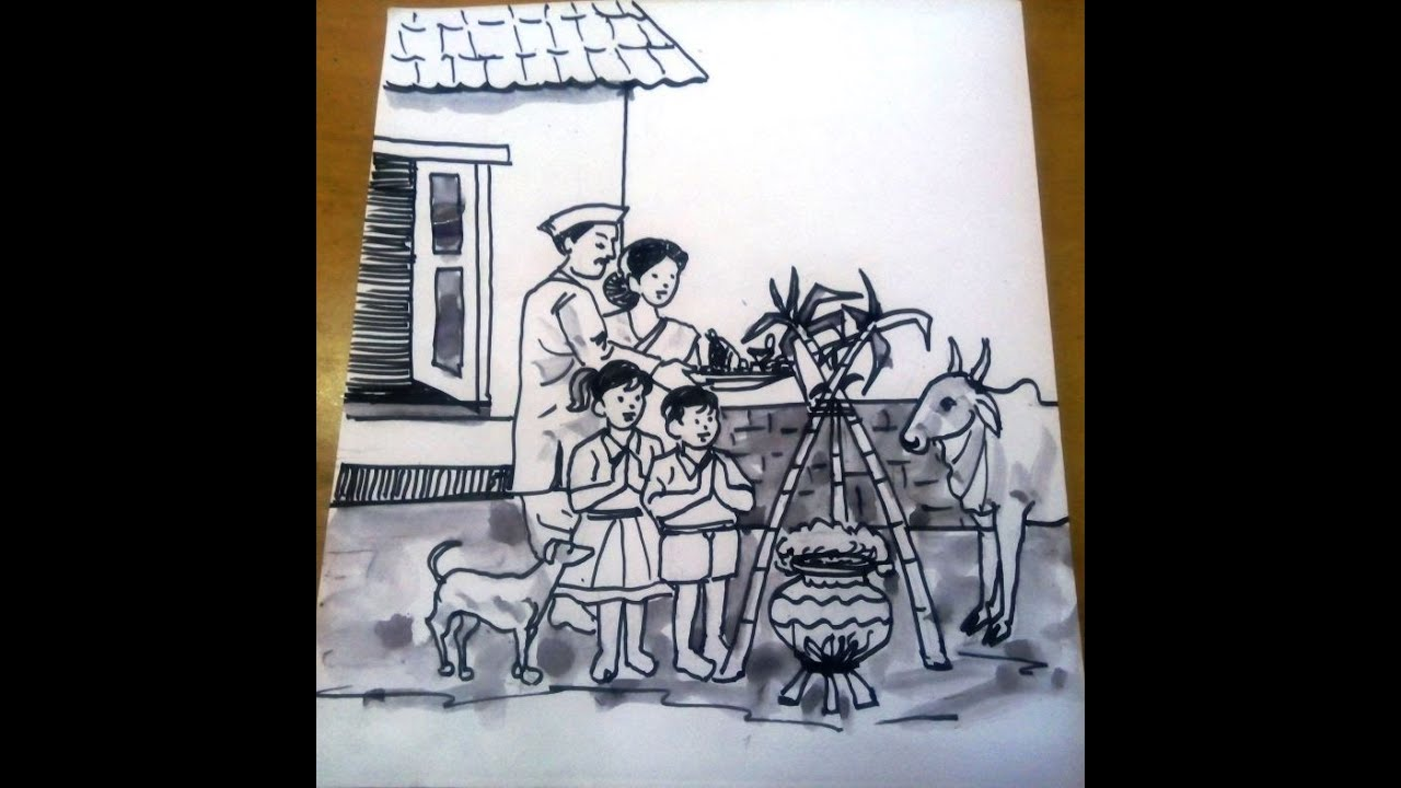 Pongal special drawing
