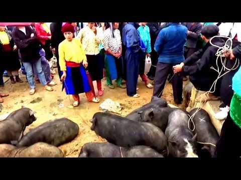 176/315. Xuyên Việt : Chợ phiên Cao nguyên đá Đồng Văn, Hà Giang (3) 18/6/2017