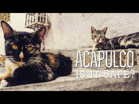ACAPULCO, MEXICO | Is It SAFE for FOREIGNERS in 2019 | LA LAJA | Acapulco Part 3