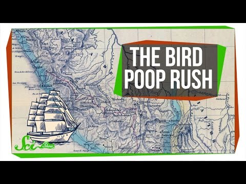 The World's Bird Poop Obsession